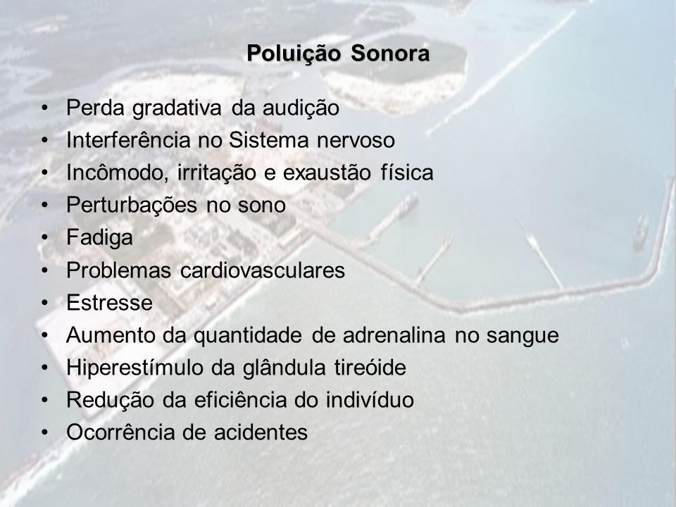 Poluição Sonora Perda gradativa da audição Interferência no Sistema nervoso Incômodo, irritação e exaustão física Perturbações no sono Fadiga Problema