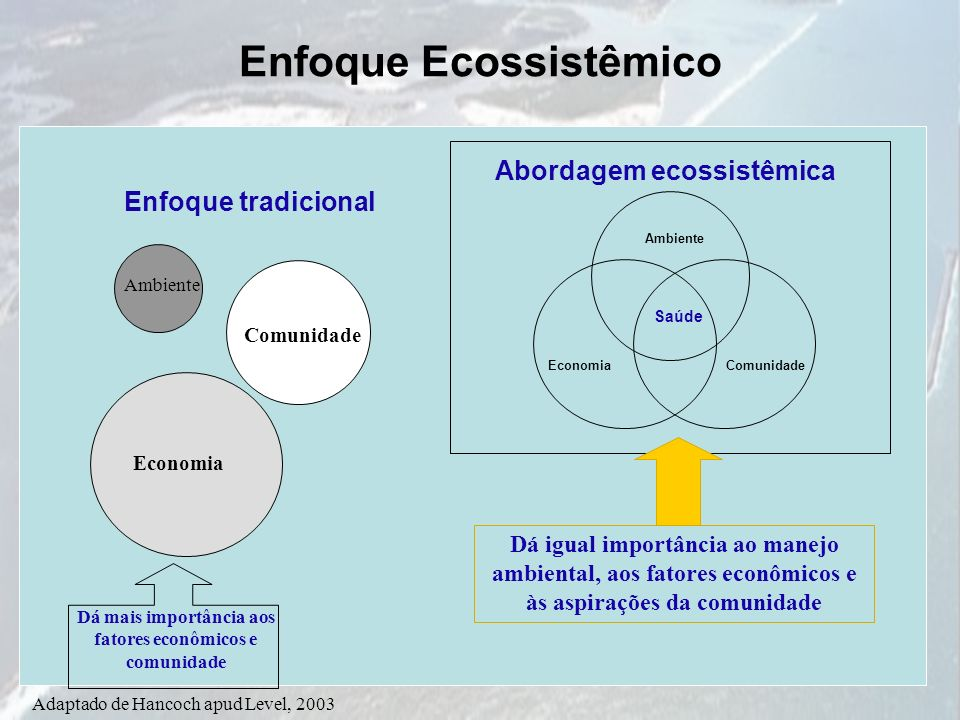Adaptado de Hancoch apud Level, 2003 Enfoque tradicional Ambiente Comunidade Economia Abordagem ecossistêmica Ambiente EconomiaComunidade Saúde Dá igu