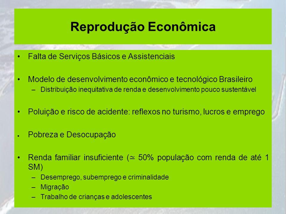 Reprodução Econômica Falta de Serviços Básicos e Assistenciais Modelo de desenvolvimento econômico e tecnológico Brasileiro –Distribuição inequitativa