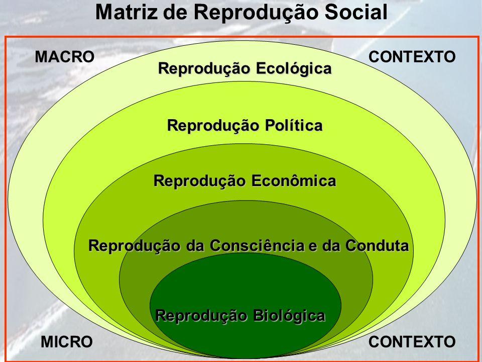 Matriz de Reprodução Social Reprodução Biológica Reprodução da Consciência e da Conduta Reprodução Econômica Reprodução Política Reprodução Ecológica