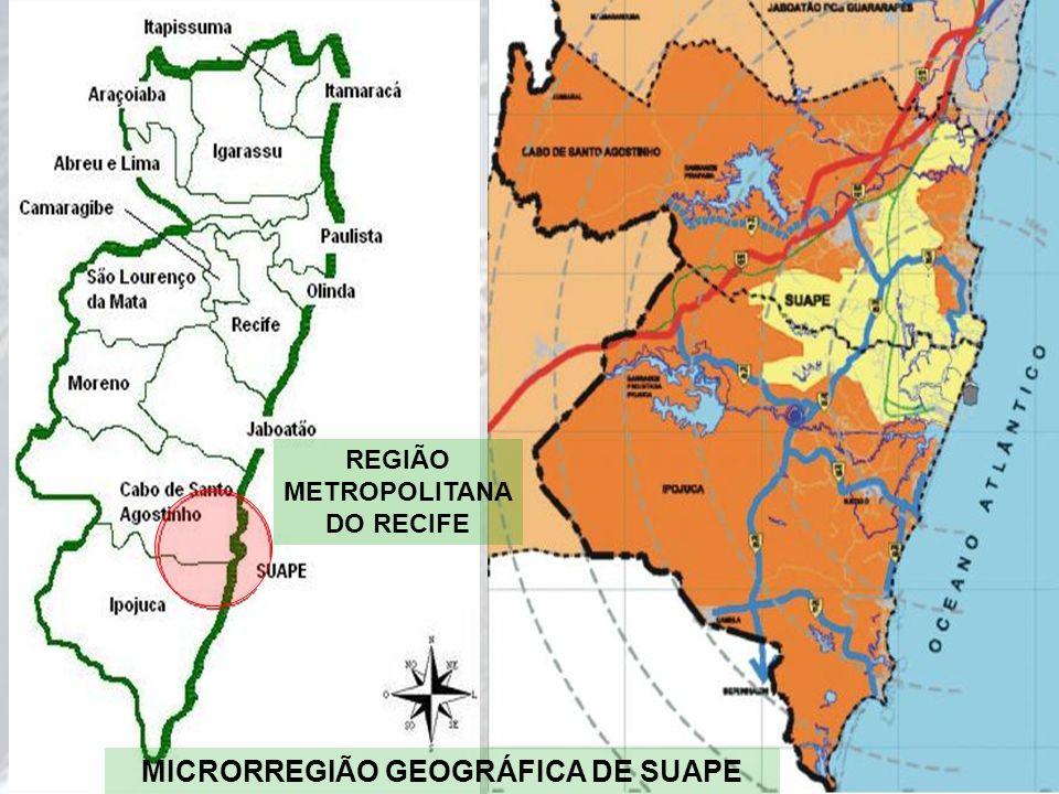 MICRORREGIÃO GEOGRÁFICA DE SUAPE REGIÃO METROPOLITANA DO RECIFE