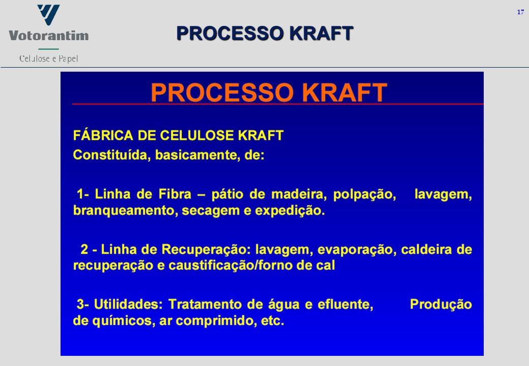 17 PROCESSO KRAFT