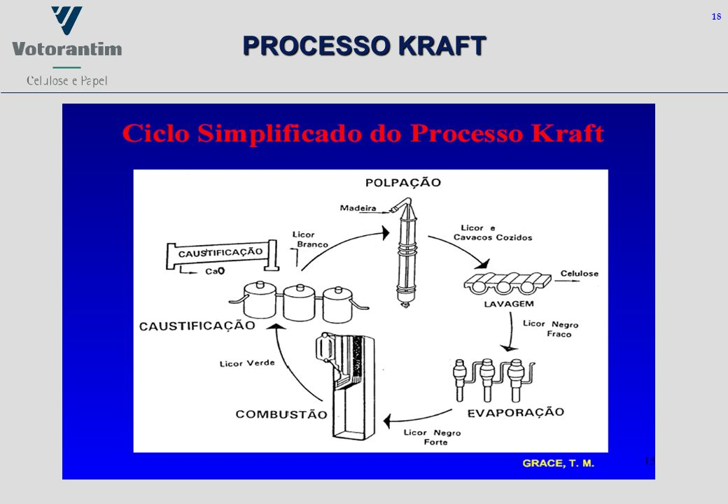 18 PROCESSO KRAFT