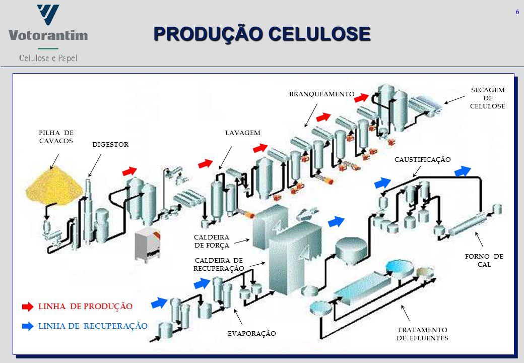 6 PRODUÇÃO CELULOSE LINHA DE PRODUÇÃO LINHA DE RECUPERAÇÃO PILHA DE CAVACOS DIGESTOR BRANQUEAMENTO LAVAGEM SECAGEM DE CELULOSE FORNO DE CAL CALDEIRA D