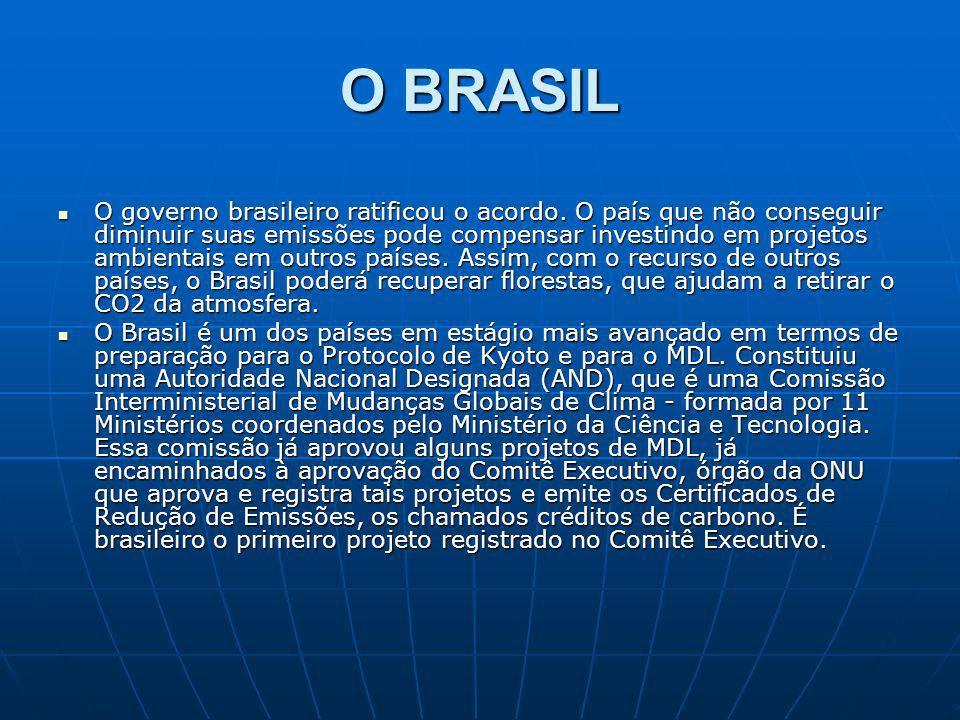 O BRASIL O governo brasileiro ratificou o acordo. O país que não conseguir diminuir suas emissões pode compensar investindo em projetos ambientais em