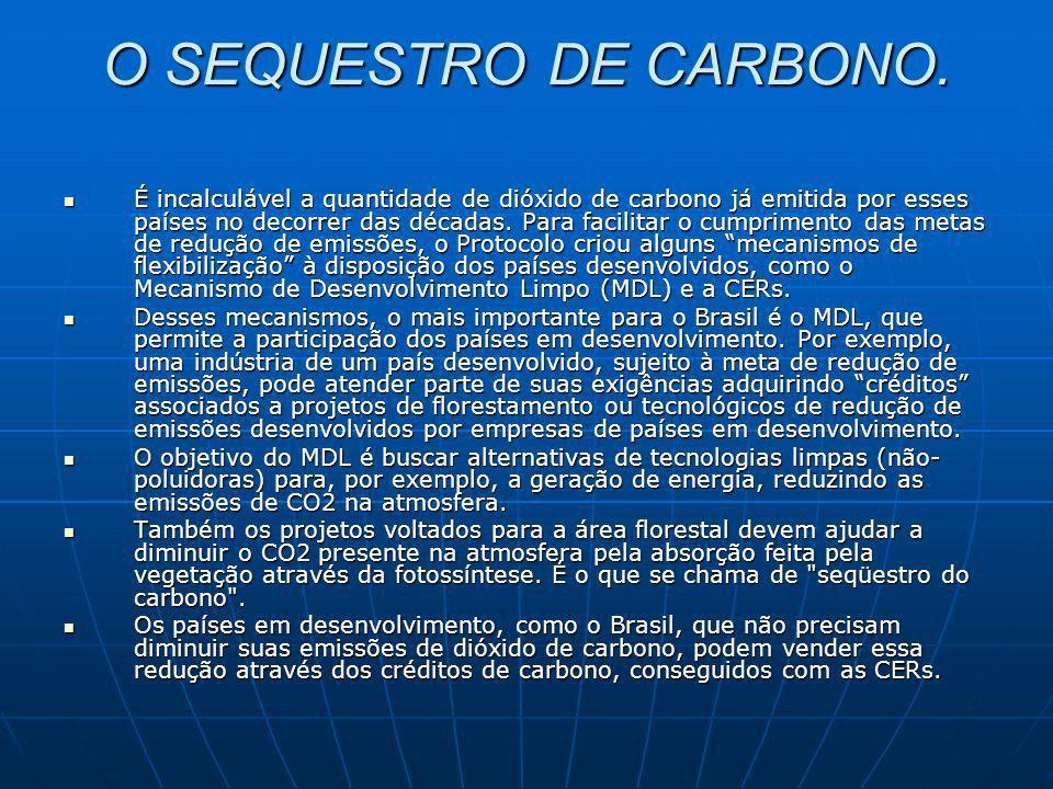 O SEQUESTRO DE CARBONO. É incalculável a quantidade de dióxido de carbono já emitida por esses países no decorrer das décadas. Para facilitar o cumpri