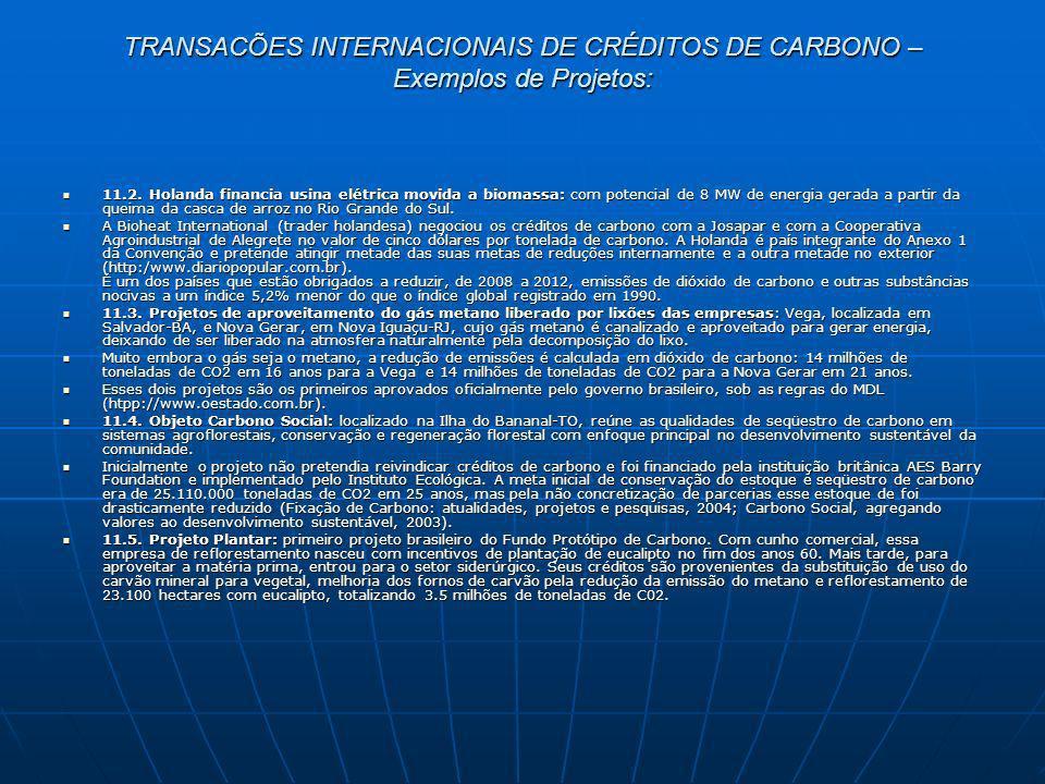 TRANSACÕES INTERNACIONAIS DE CRÉDITOS DE CARBONO – Exemplos de Projetos: 11.2. Holanda financia usina elétrica movida a biomassa: com potencial de 8 M