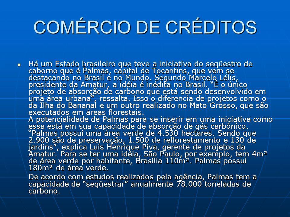 COMÉRCIO DE CRÉDITOS Há um Estado brasileiro que teve a iniciativa do seqüestro de caborno que é Palmas, capital de Tocantins, que vem se destacando n