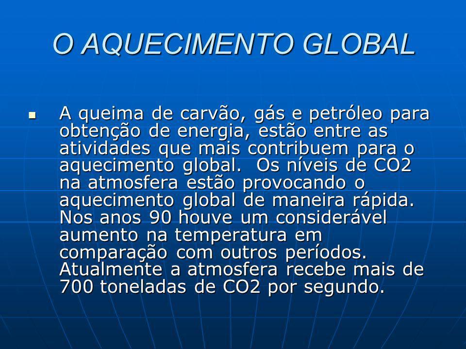 TRANSACÕES INTERNACIONAIS DE CRÉDITOS DE CARBONO – Exemplos de Projetos: 11.2.