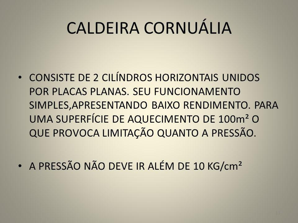 CALDEIRA CORNUÁLIA CONSISTE DE 2 CILÍNDROS HORIZONTAIS UNIDOS POR PLACAS PLANAS. SEU FUNCIONAMENTO SIMPLES,APRESENTANDO BAIXO RENDIMENTO. PARA UMA SUP