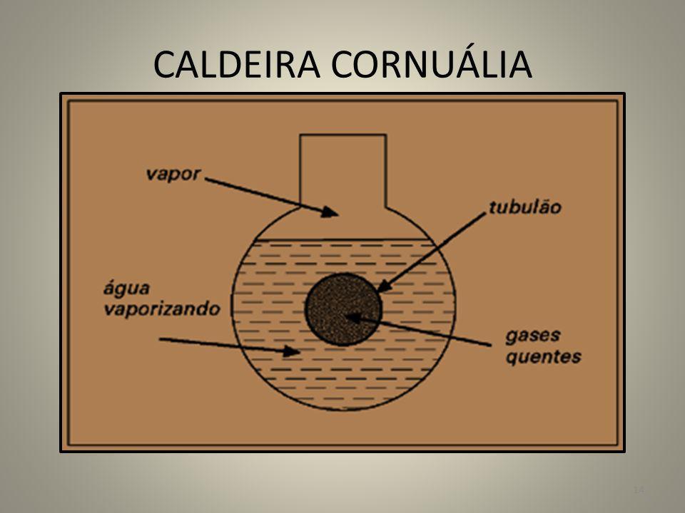 CALDEIRA CORNUÁLIA 14