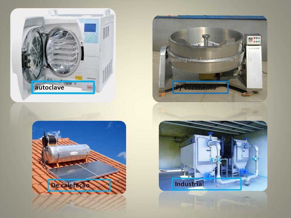 autoclave P/ cozimento De calefação Industrial 4
