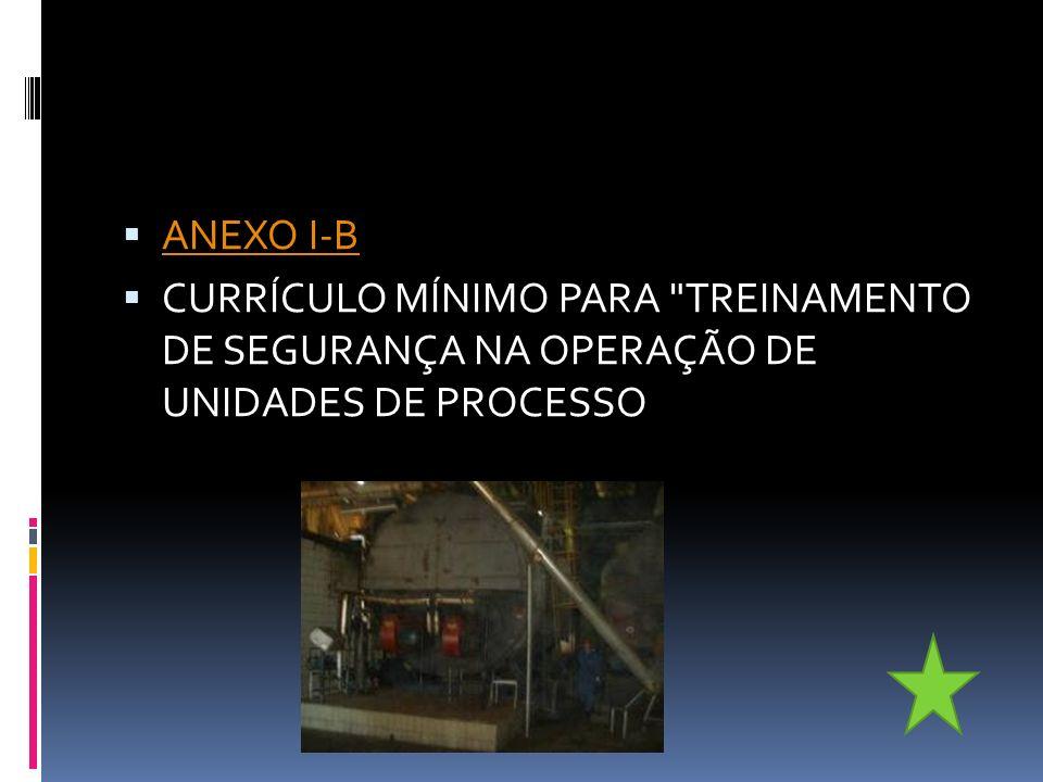 ANEXO I-B CURRÍCULO MÍNIMO PARA TREINAMENTO DE SEGURANÇA NA OPERAÇÃO DE UNIDADES DE PROCESSO