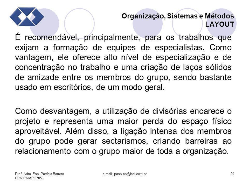 Prof. Adm. Esp. Patrícia Barreto CRA PA/AP 07856 e-mail: pasb-ap@bol.com.br29 Organização, Sistemas e Métodos LAYOUT É recomendável, principalmente, p