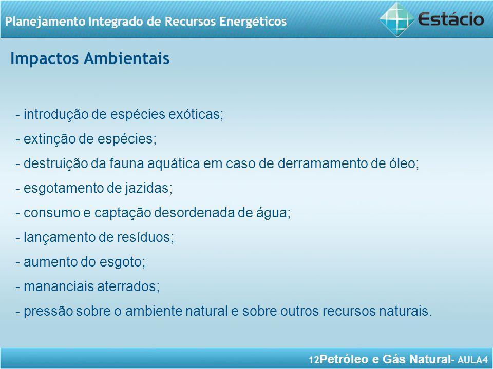 12 Petróleo e Gás Natural – AULA4 Planejamento Integrado de Recursos Energéticos - introdução de espécies exóticas; - extinção de espécies; - destruiç
