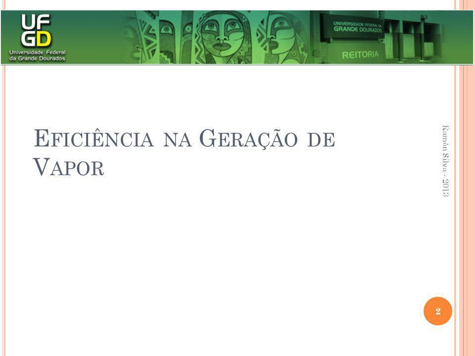 E FICIÊNCIA NA G ERAÇÃO DE V APOR Ramón Silva - 2013 2
