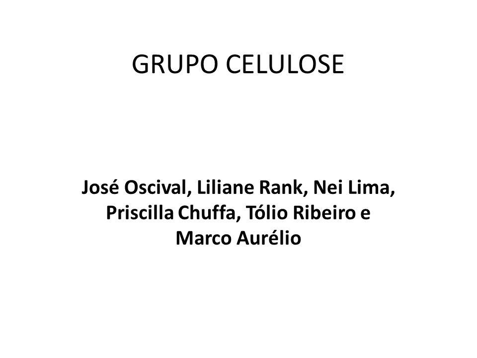 GRUPO CELULOSE José Oscival, Liliane Rank, Nei Lima, Priscilla Chuffa, Tólio Ribeiro e Marco Aurélio
