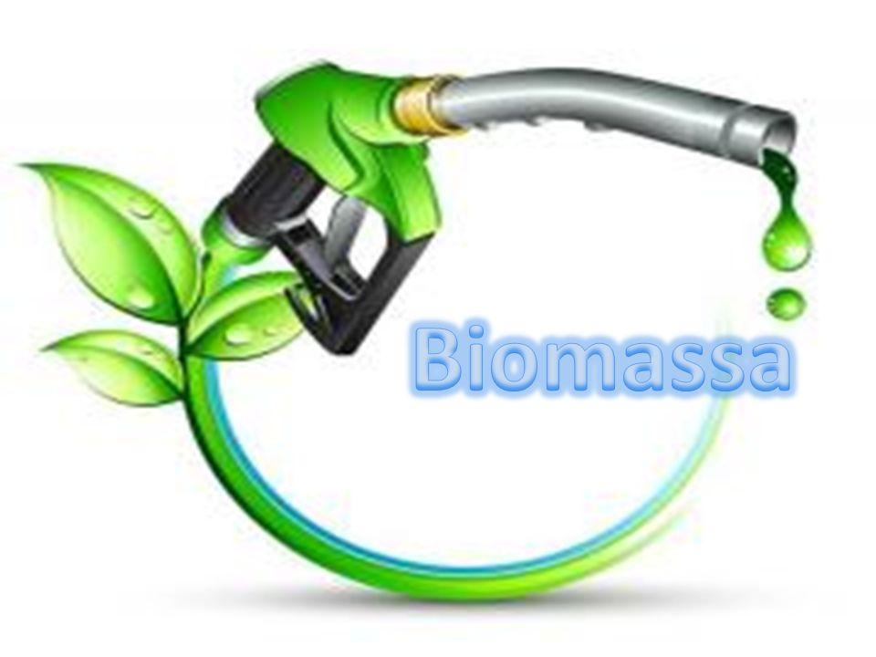Ocorre na ausência de ar, porém o processo de decomposição da biomassa é feito por bactérias (biológico) que ao decompor o material (processo que ocorre normalmente com a biomassa, porém nesse caso, é acelerado em um biodigestor), produz o biogás composto por metano e dióxido de carbono que tem um conteúdo energético em torno de 5.500 kcal/m³.