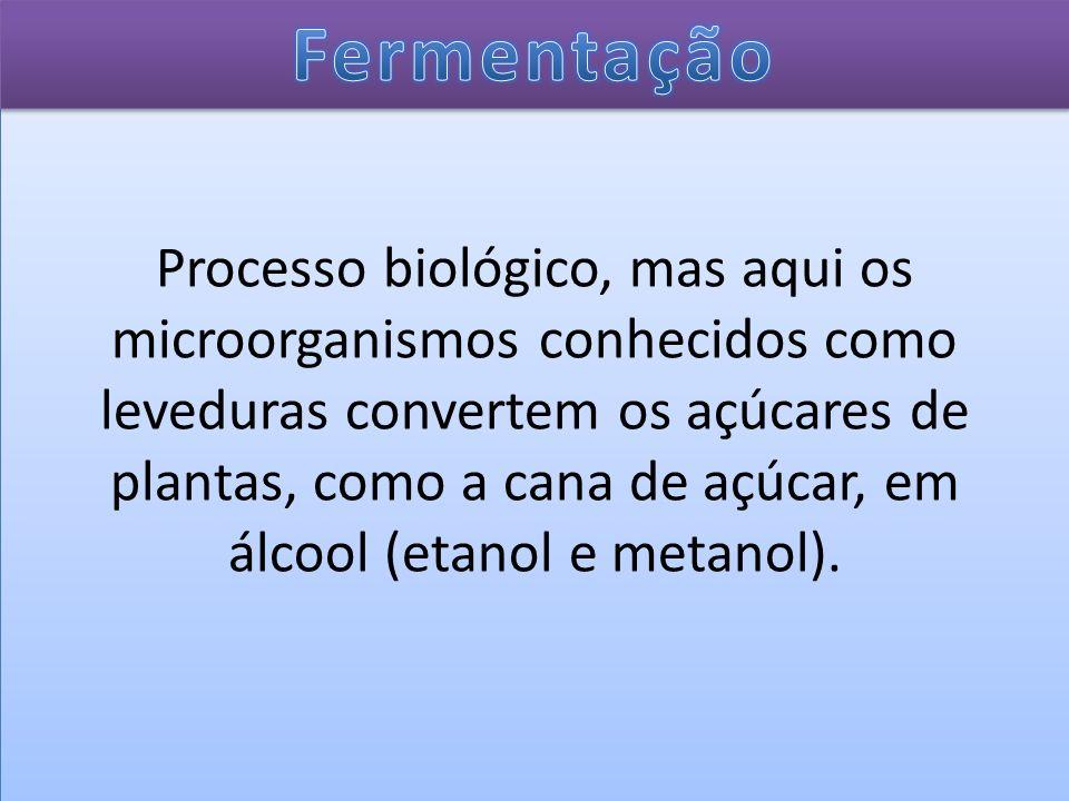 Processo biológico, mas aqui os microorganismos conhecidos como leveduras convertem os açúcares de plantas, como a cana de açúcar, em álcool (etanol e metanol).