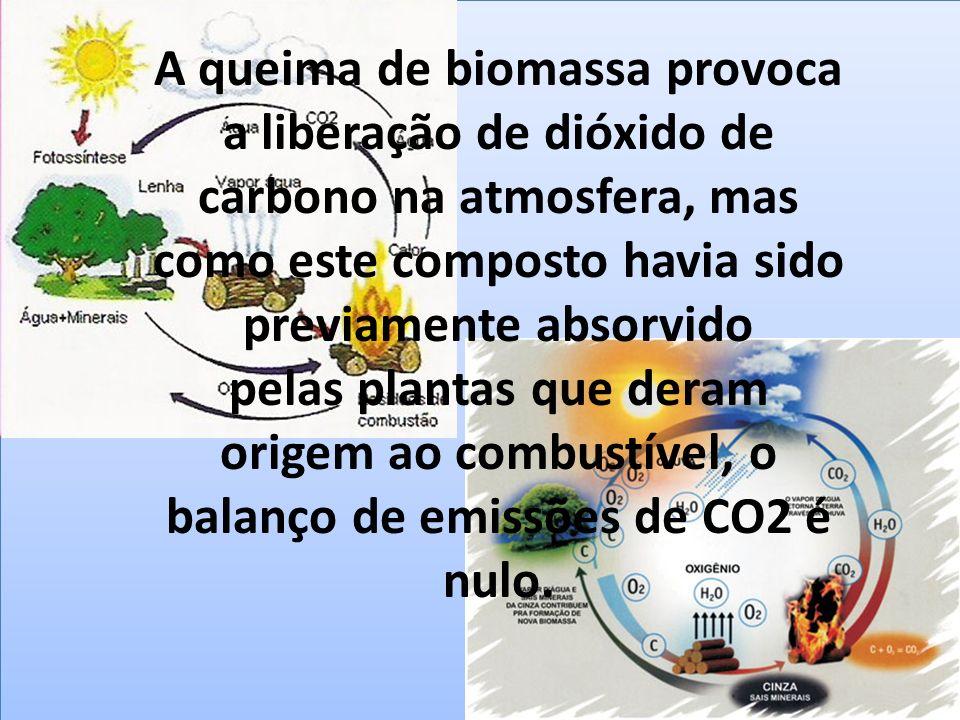 A queima de biomassa provoca a liberação de dióxido de carbono na atmosfera, mas como este composto havia sido previamente absorvido pelas plantas que