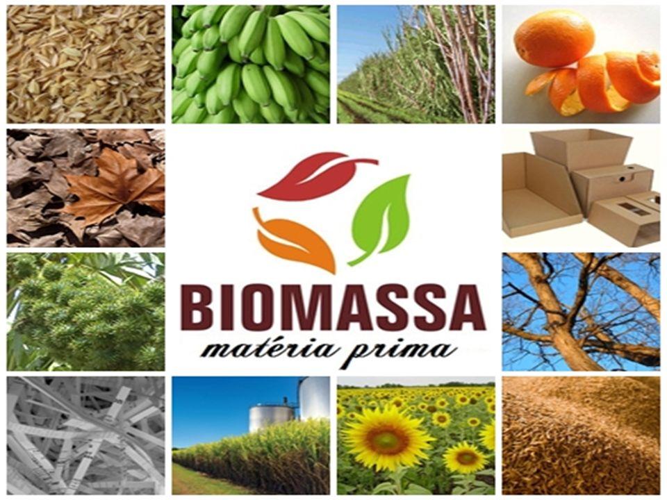 A energia disponível na biomassa apresenta-se sempre na forma de energia química, impondo a necessidade da utilização de processos de conversão para sua utilização como: combustão direta, gaseificação, pirólise, liquefação, digestão anaeróbica, etc.