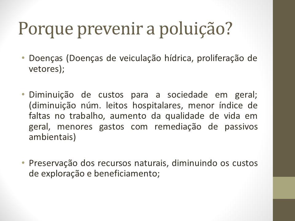Porque prevenir a poluição? Doenças (Doenças de veiculação hídrica, proliferação de vetores); Diminuição de custos para a sociedade em geral; (diminui