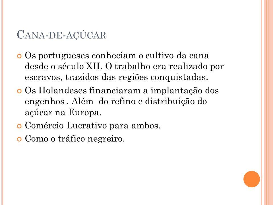 C ANA - DE - AÇÚCAR Os portugueses conheciam o cultivo da cana desde o século XII. O trabalho era realizado por escravos, trazidos das regiões conquis