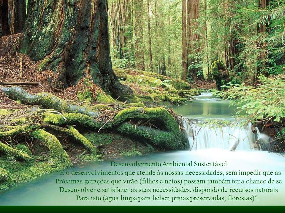 Desenvolvimento Ambiental Sustentável É o desenvolvimentos que atende às nossas necessidades, sem impedir que as Próximas gerações que virão (filhos e