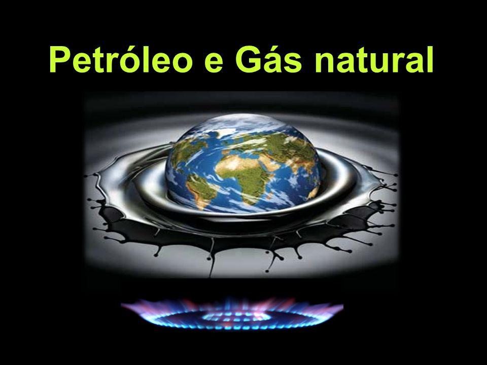 O petróleo e o gás natural são fontes de energia das centrais termoeléctricas (manifestação).