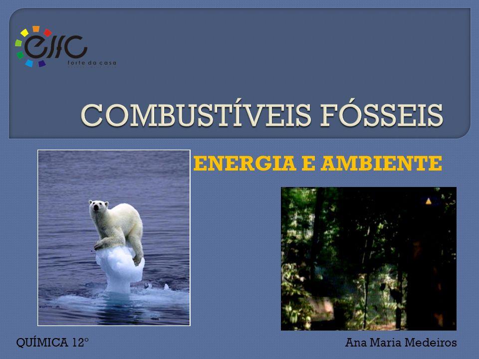 ENERGIA E AMBIENTE Ana Maria MedeirosQUÍMICA 12º