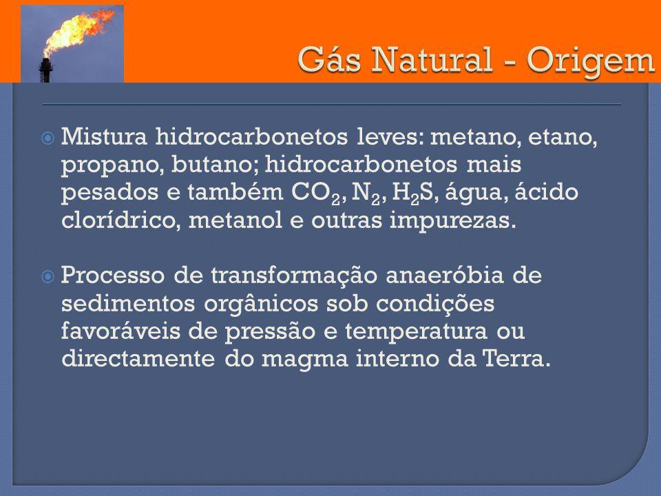Mistura hidrocarbonetos leves: metano, etano, propano, butano; hidrocarbonetos mais pesados e também CO 2, N 2, H 2 S, água, ácido clorídrico, metanol