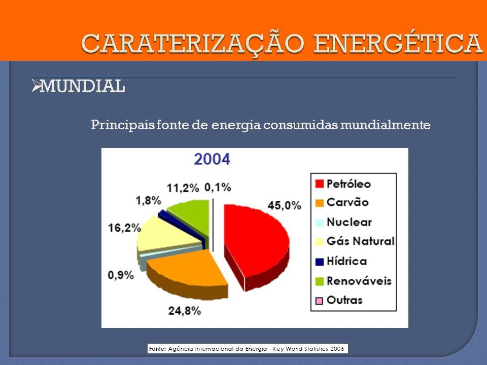 MUNDIAL Principais fonte de energia consumidas mundialmente