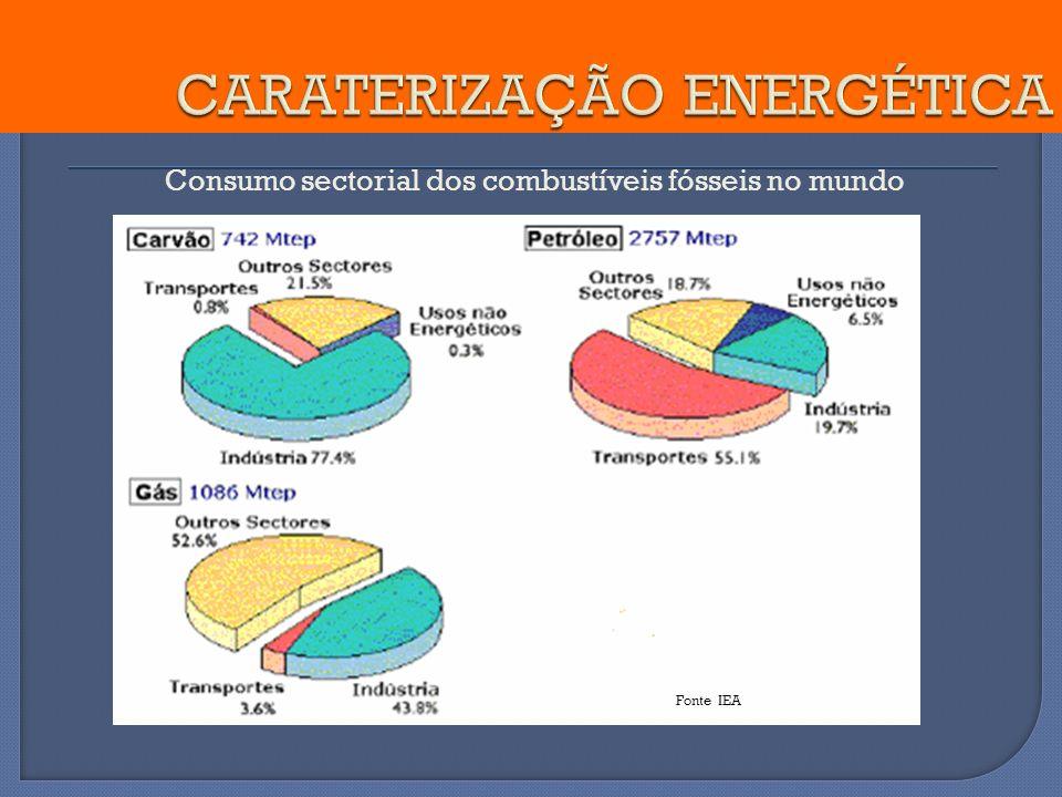 Consumo sectorial dos combustíveis fósseis no mundo Fonte IEA