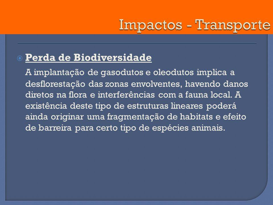 Perda de Biodiversidade A implantação de gasodutos e oleodutos implica a desflorestação das zonas envolventes, havendo danos diretos na flora e interf