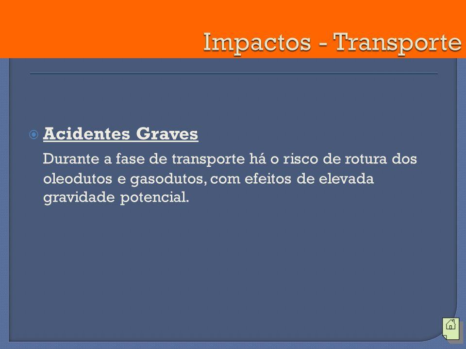 Acidentes Graves Durante a fase de transporte há o risco de rotura dos oleodutos e gasodutos, com efeitos de elevada gravidade potencial.