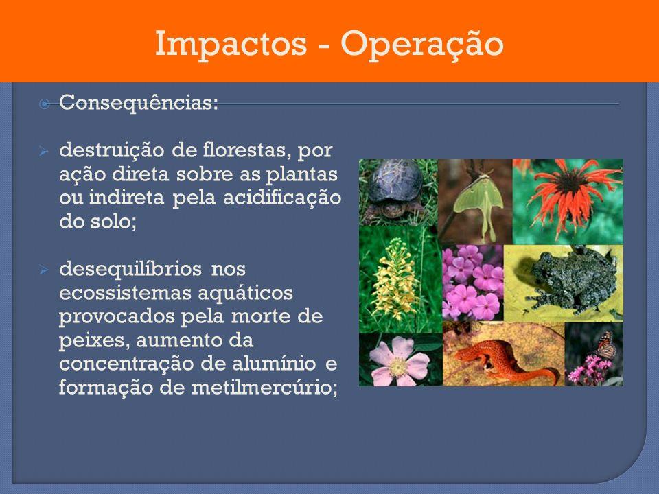 Consequências: destruição de florestas, por ação direta sobre as plantas ou indireta pela acidificação do solo; desequilíbrios nos ecossistemas aquáti