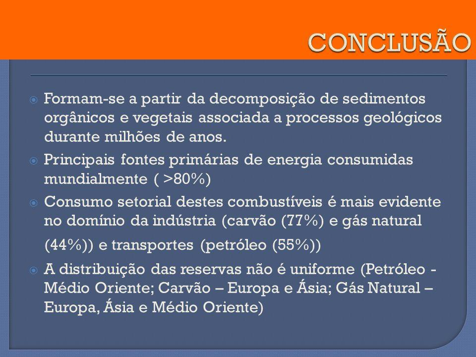 Formam-se a partir da decomposição de sedimentos orgânicos e vegetais associada a processos geológicos durante milhões de anos. Principais fontes prim