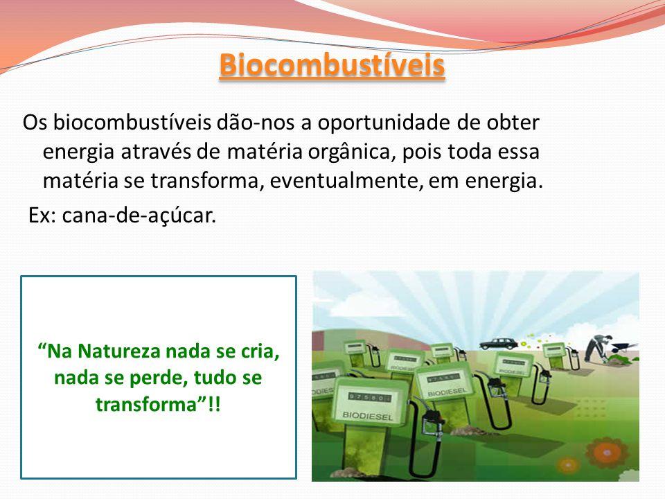 Os biocombustíveis dão-nos a oportunidade de obter energia através de matéria orgânica, pois toda essa matéria se transforma, eventualmente, em energi
