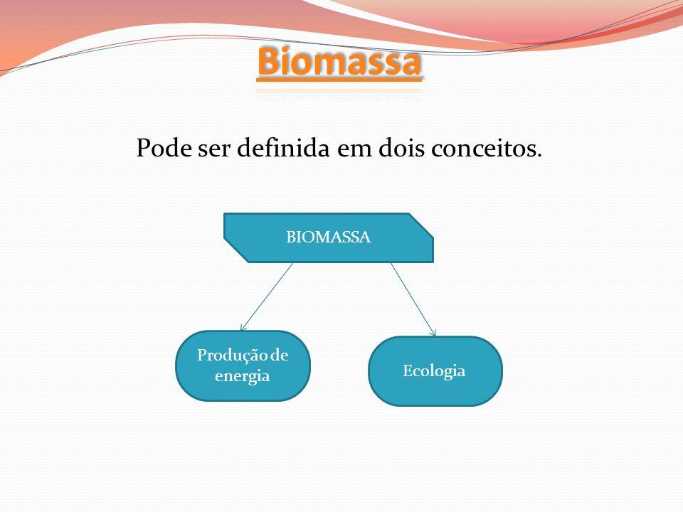 BIOMASSA Produção de energia Ecologia