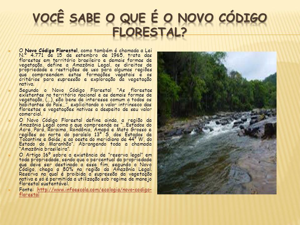 O Novo Código Florestal, como também é chamada a Lei N.º 4.771 de 15 de setembro de 1965, trata das florestas em território brasileiro e demais formas