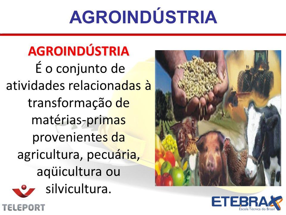 AGROINDÚSTRIA AGROINDÚSTRIA É o conjunto de atividades relacionadas à transformação de matérias-primas provenientes da agricultura, pecuária, aqüicult
