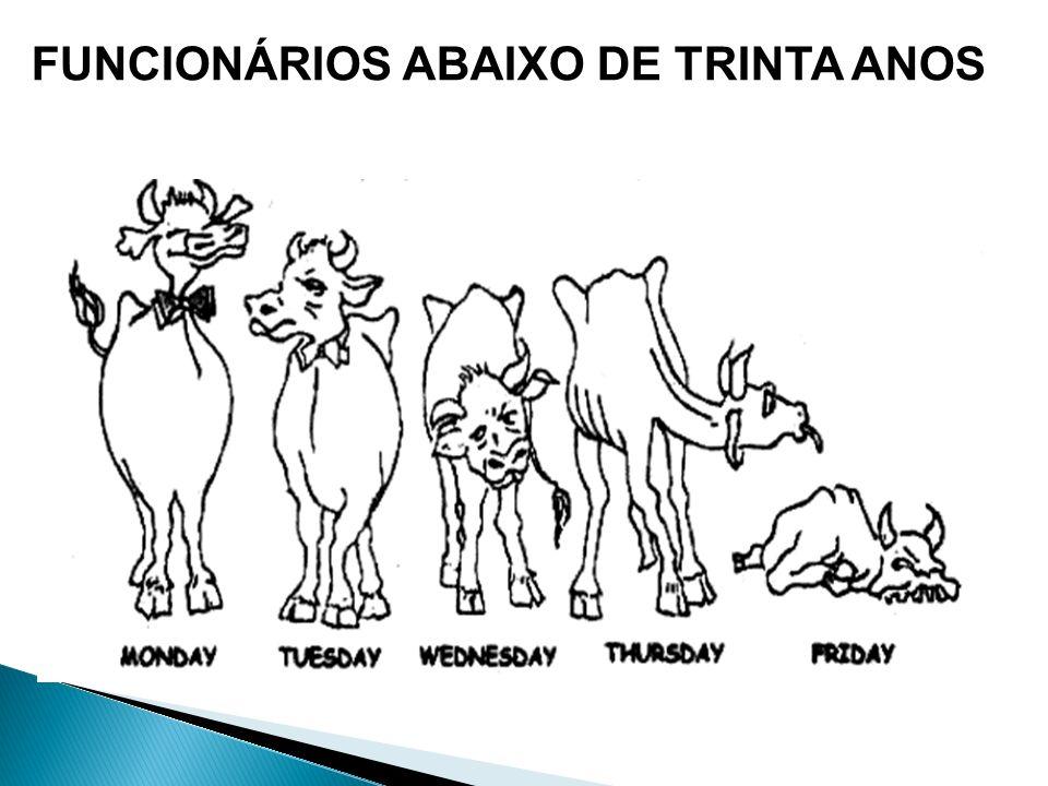 FUNCIONÁRIOS ABAIXO DE TRINTA ANOS