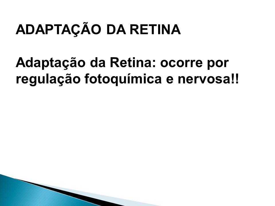 ADAPTAÇÃO DA RETINA Adaptação da Retina: ocorre por regulação fotoquímica e nervosa!!