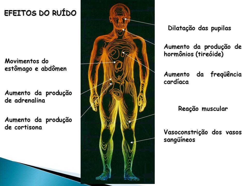 Dilatação das pupilas EFEITOS DO RUÍDO Aumento da produção de hormônios (tireóide) Aumento da freqüência cardíaca Aumento da produção de adrenalina Au