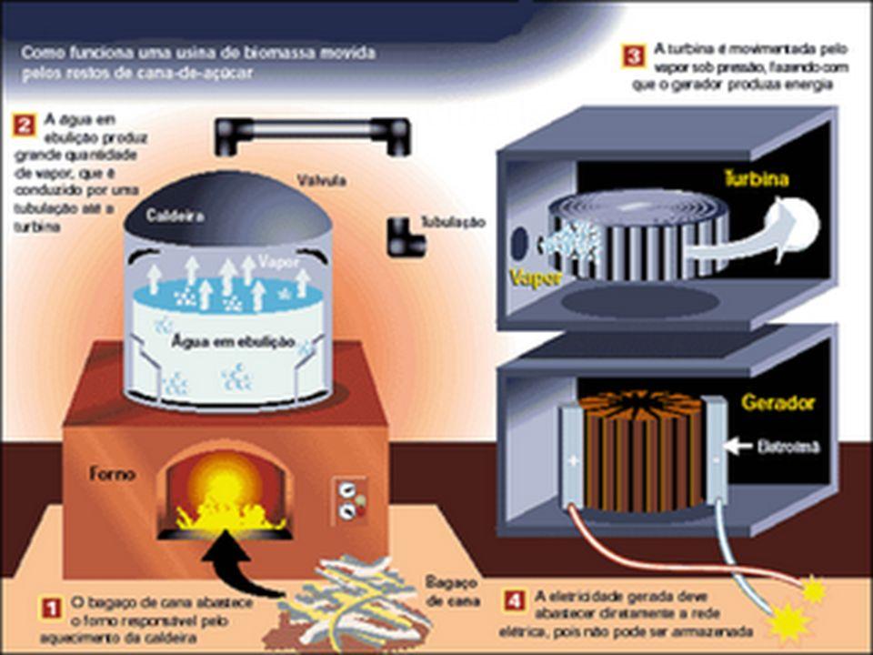 Como transformar a biomassa em eletricidade