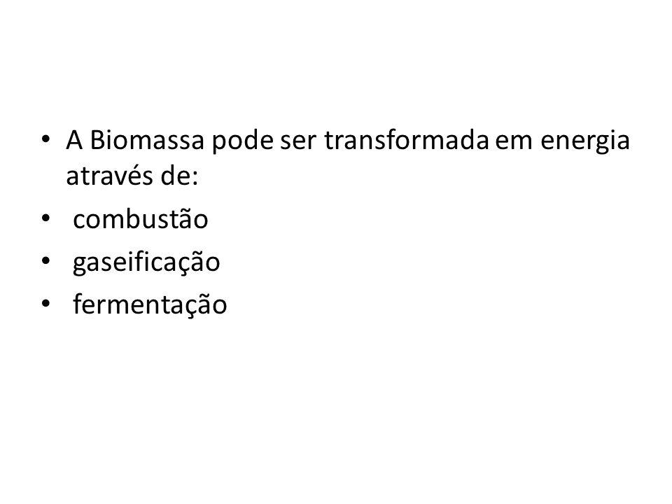 A Biomassa pode ser transformada em energia através de: combustão gaseificação fermentação