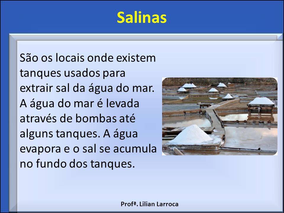 Salinas São os locais onde existem tanques usados para extrair sal da água do mar. A água do mar é levada através de bombas até alguns tanques. A água