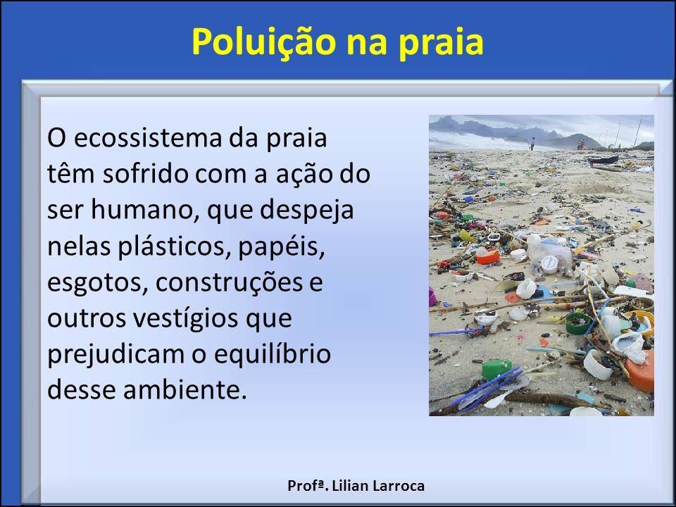 Poluição na praia O ecossistema da praia têm sofrido com a ação do ser humano, que despeja nelas plásticos, papéis, esgotos, construções e outros vest