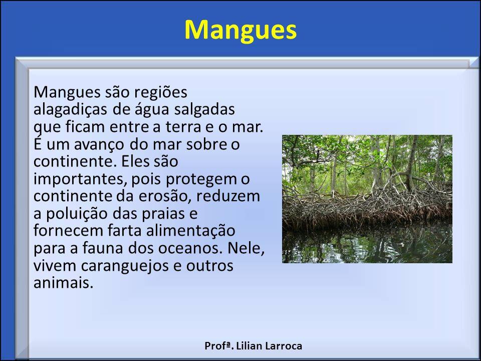 Mangues Mangues são regiões alagadiças de água salgadas que ficam entre a terra e o mar. É um avanço do mar sobre o continente. Eles são importantes,