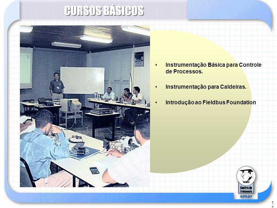 11 CURSOS BÁSICOS Instrumentação Básica para Controle de Processos.